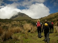 Hikers Ascending to Corazon Volcano Sumit through Paramos and Green Landscape