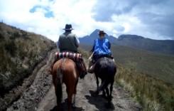 טיול סוסים יומי