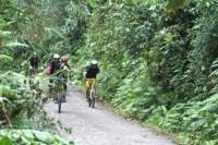 Crossing the Andes from Nono to Mindo Ecuador Mountain Biking Tour