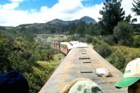 ריובמבה ורכבת אף השטן